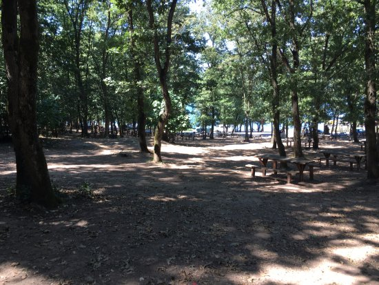 Piknik Yapalım