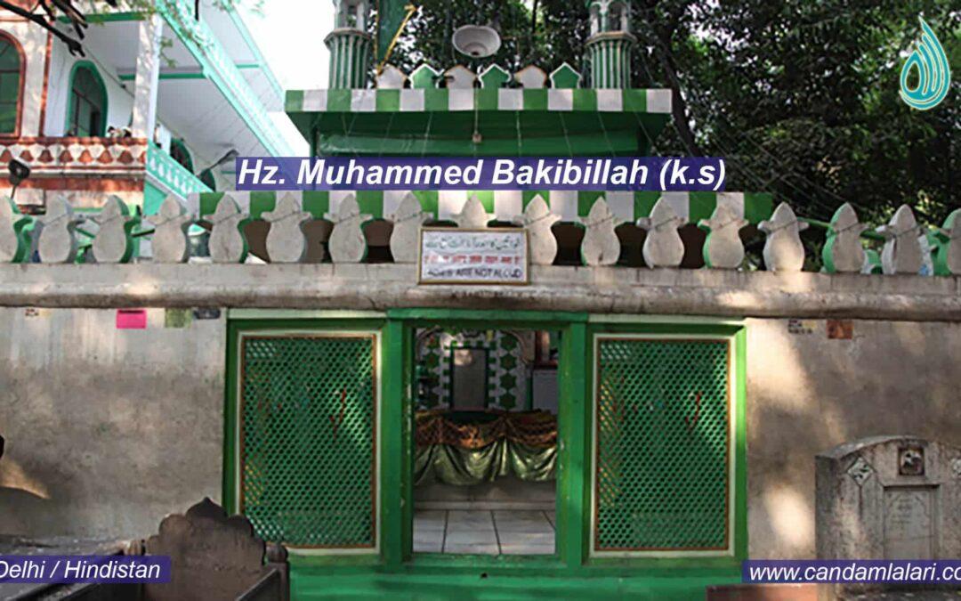 Hz. Muhammed Bakibillah (k.s)