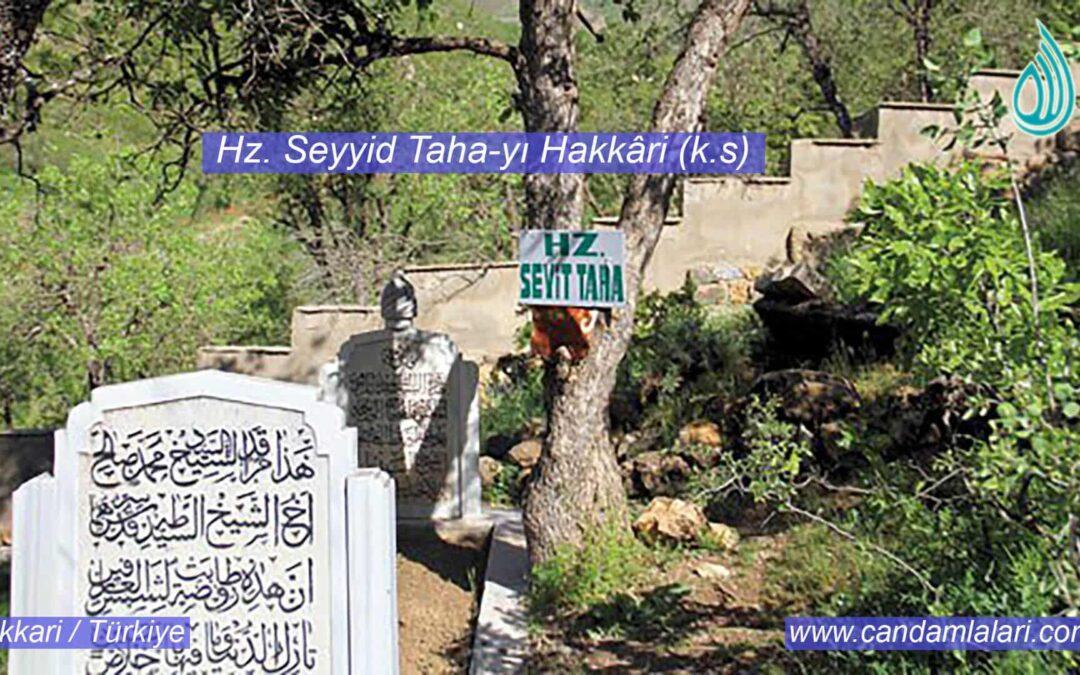 Hz. Seyyid Taha-yı Hakkâri (k.s)